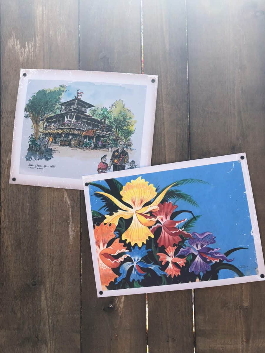 Walt Disney's Enchanted Tiki Room concept art decorating the outside of the construction wall for the future Tropical Hideaway in Adventureland in Disneyland