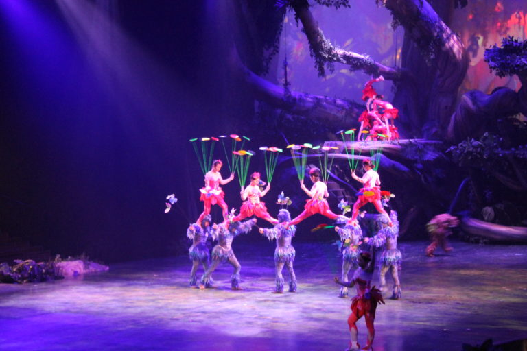 Tarzan Call of the Jungle at the Storyhouse Stage