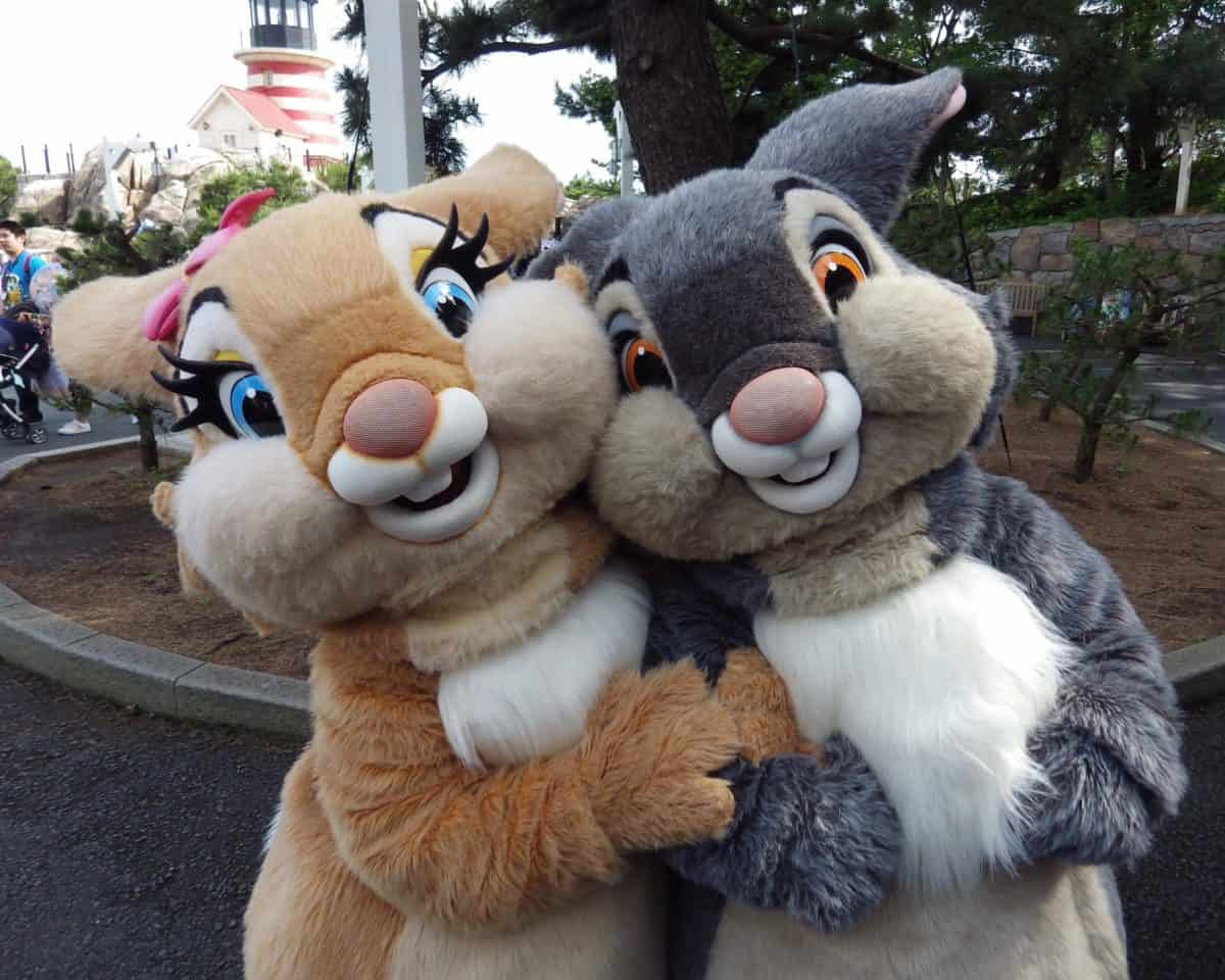 Thumper and Miss Bunny in Cape Cod at Tokyo DisneySea