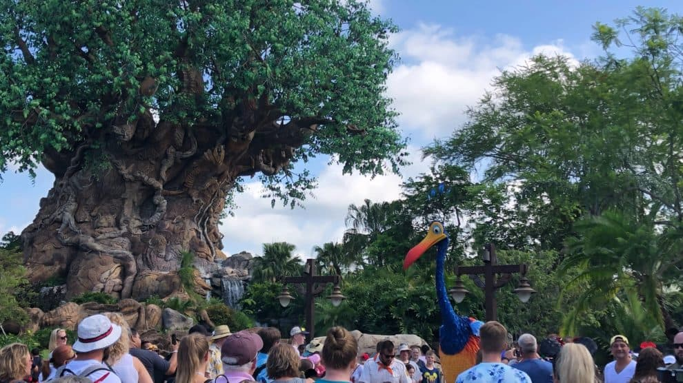 Tree of Life with Kevin