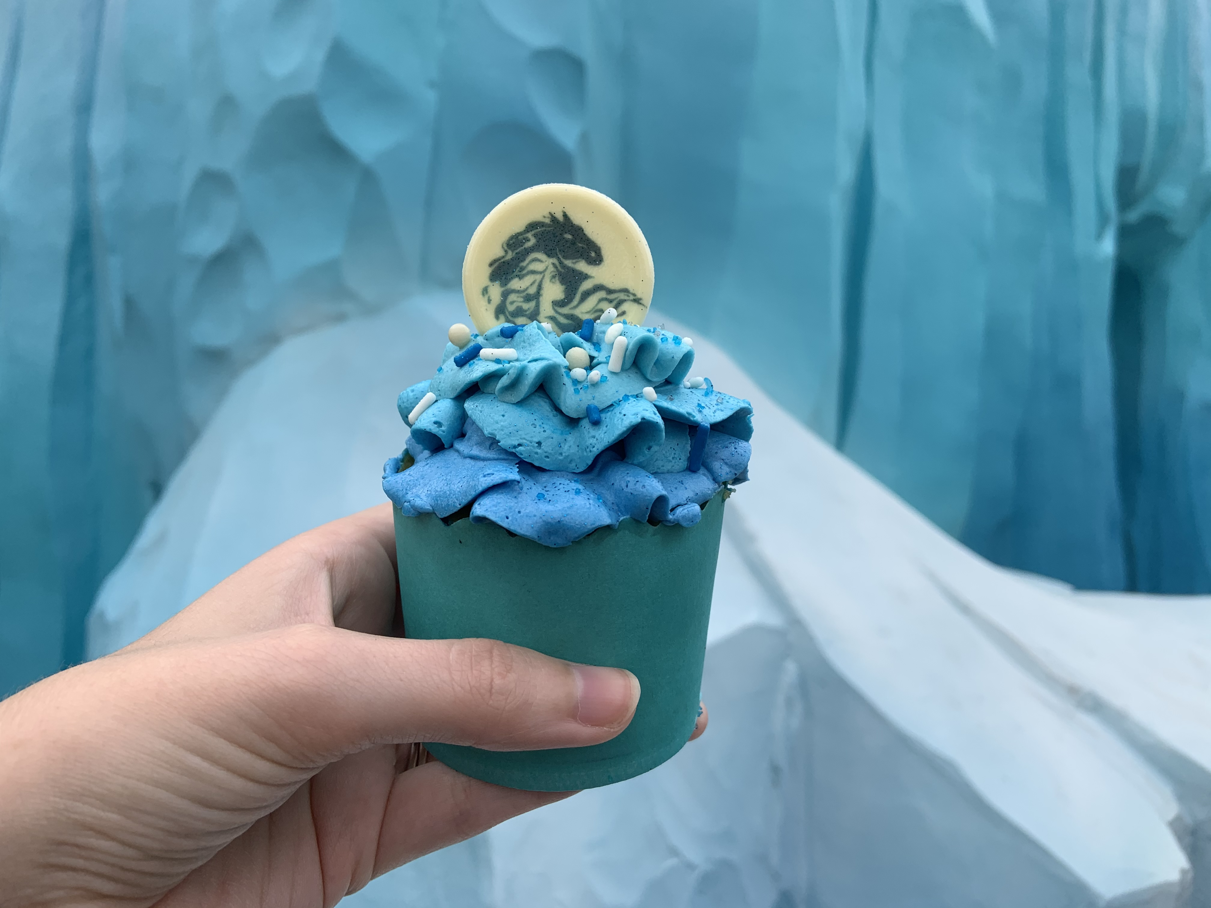 Frozen Fractals cupcake at All Star Movies (1)