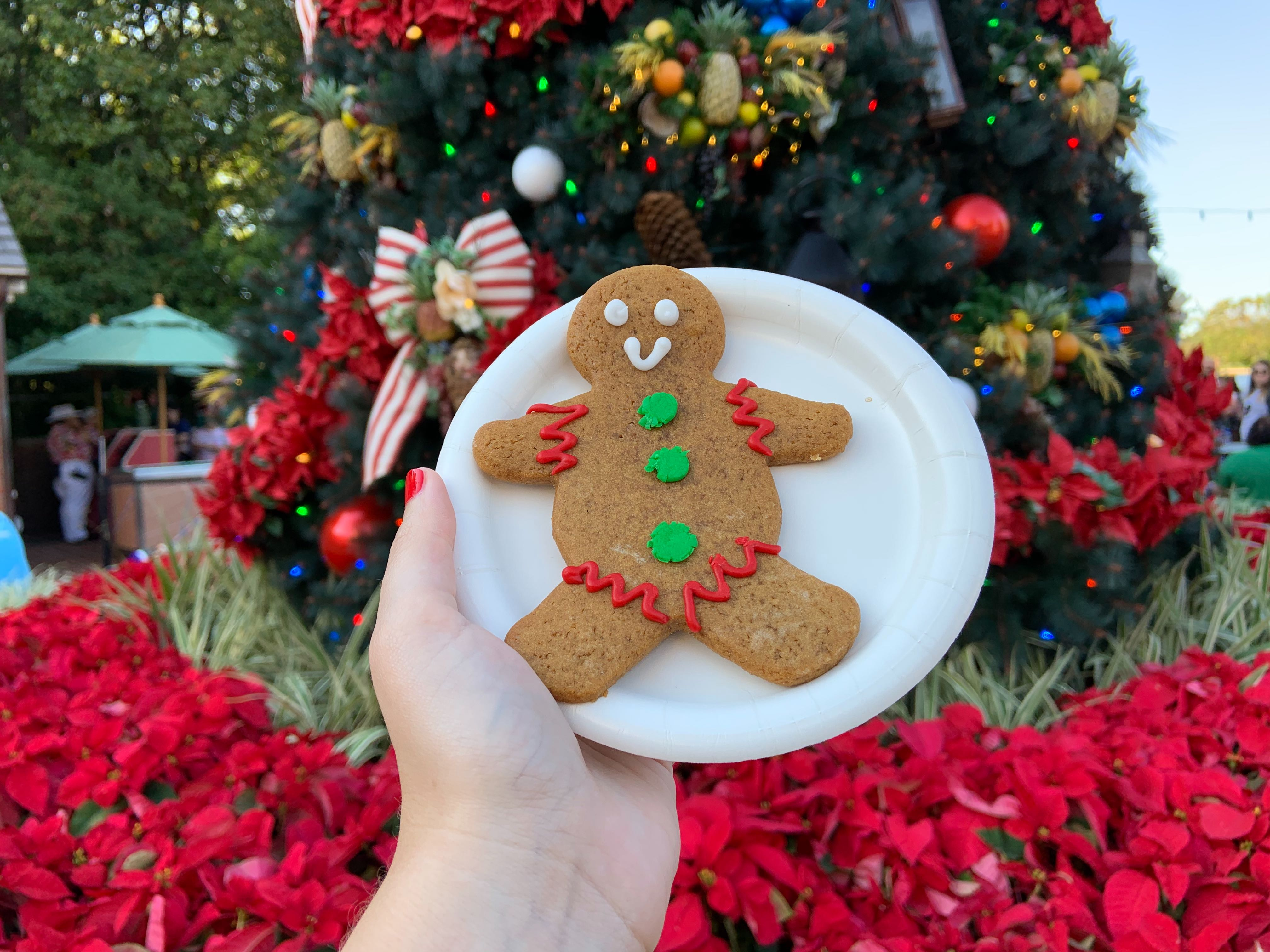 *NEW* Gingerbread Cookie – $2.50