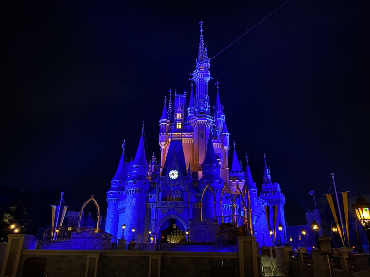 cinderella-castle-lit-up-night-13-9943148