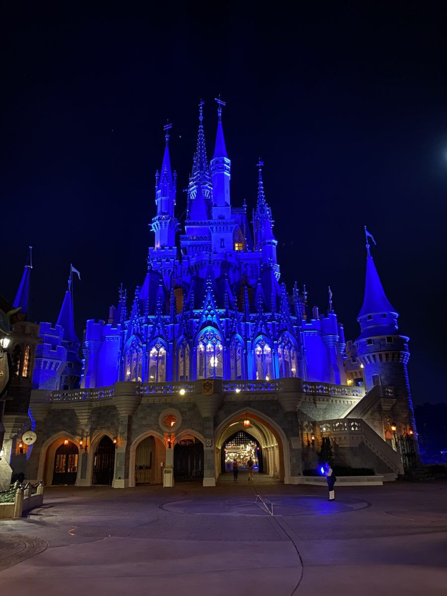 cinderella-castle-lit-up-night-3-4624889