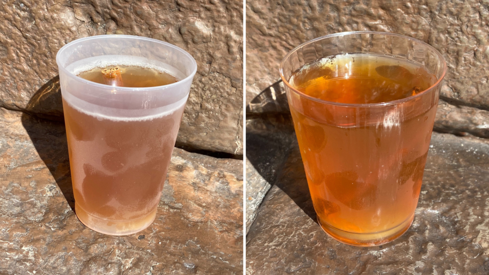 holiday-beverages-english-garden-taste-of-epcot-international-festival-of-the-holidays-featured