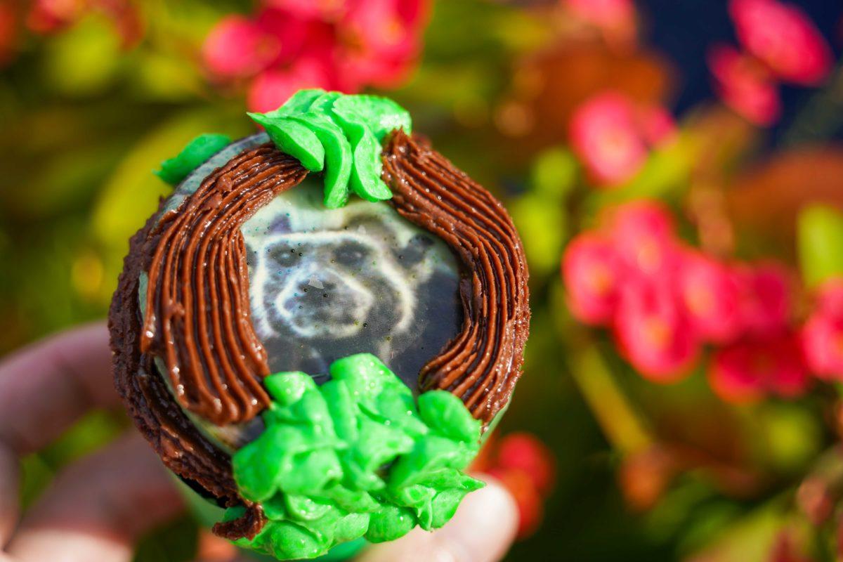 cotton-top-tamarin-cupcake-23