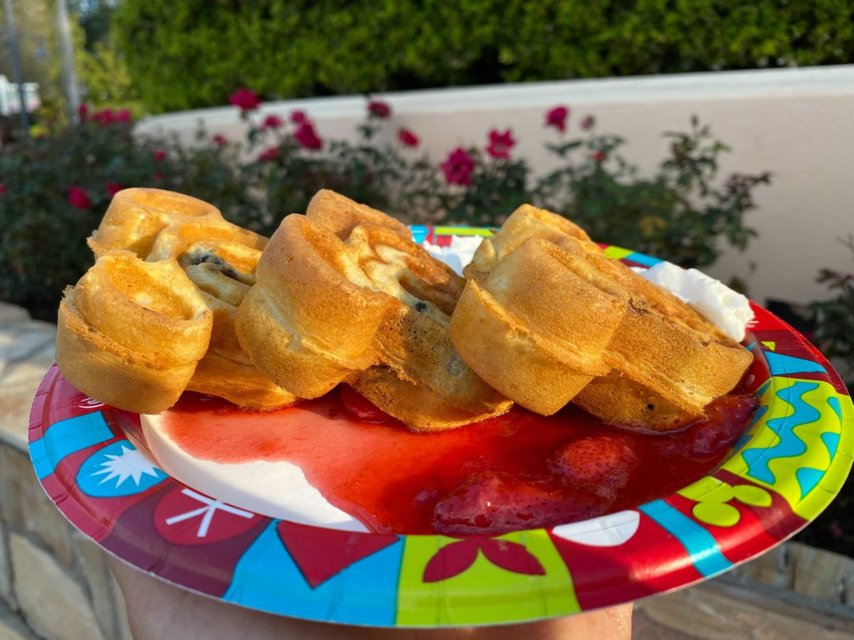 hollywood-scoops-waffles-9